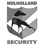 Local SEO in Los Angeles is why Mulholland Security hired Nimbus Marketing